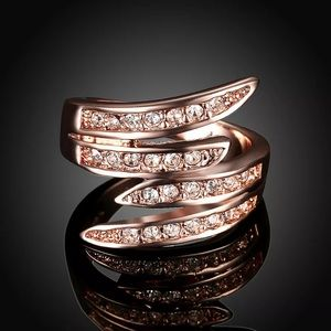 beautiful rose gold colored angel's wings